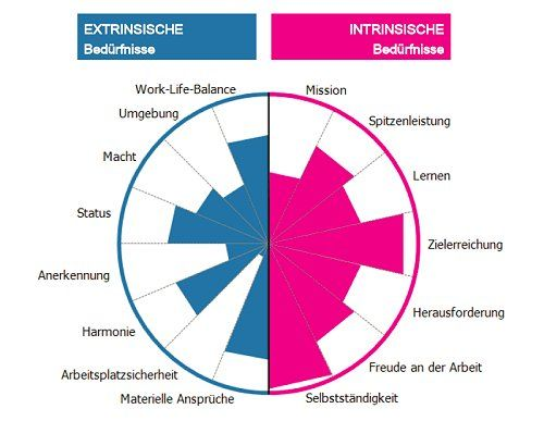 GfD WFMO Gesundes Motivationsmanagement extrinsiche und intrinsiche Beduerfnisse