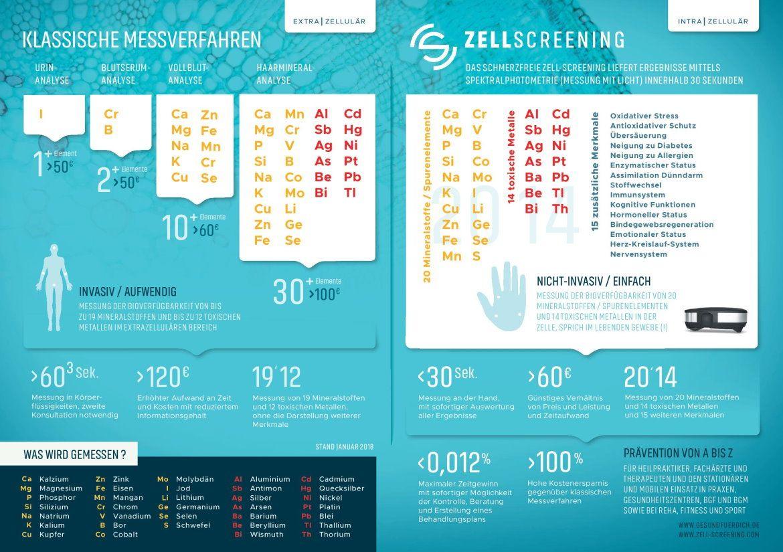 gfd gesund fuer dich infografik 1 intrazellulaer extrazellulaer